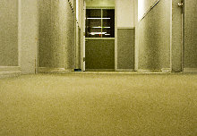 clean office carpet